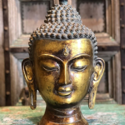 bronze buddha head with antique golden finish